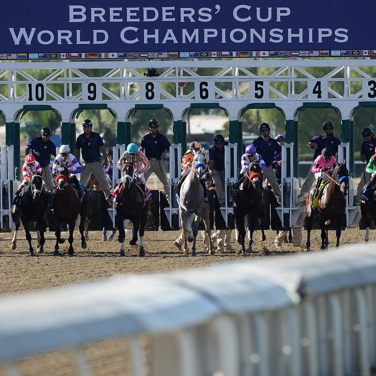 Breeders Cup Post Positions 2014 Odds And Predictions