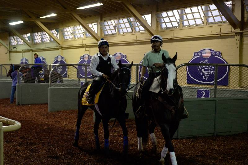 Breeders' Cup 2014 TV Schedule: Live Stream, Start Times and