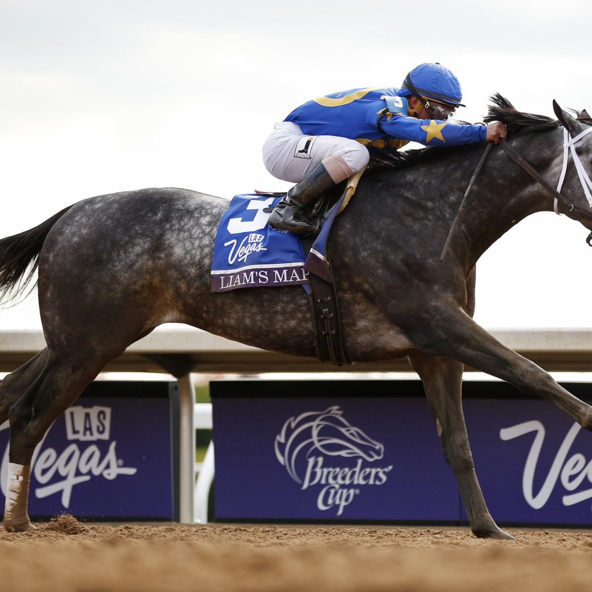 Breeders Cup 2015 Payouts Prize Money Purse Info For All Races On Friday Bleacher Report Latest News Videos And Highlights