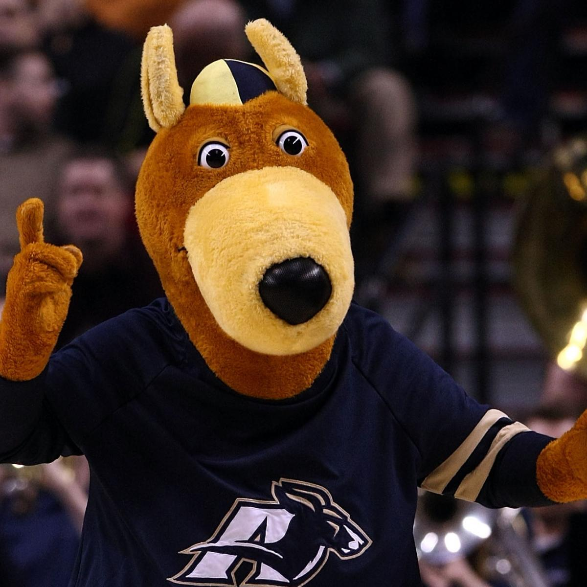 Seen The D1 Mascots Ever Akron College Has Zips  Nobody &
