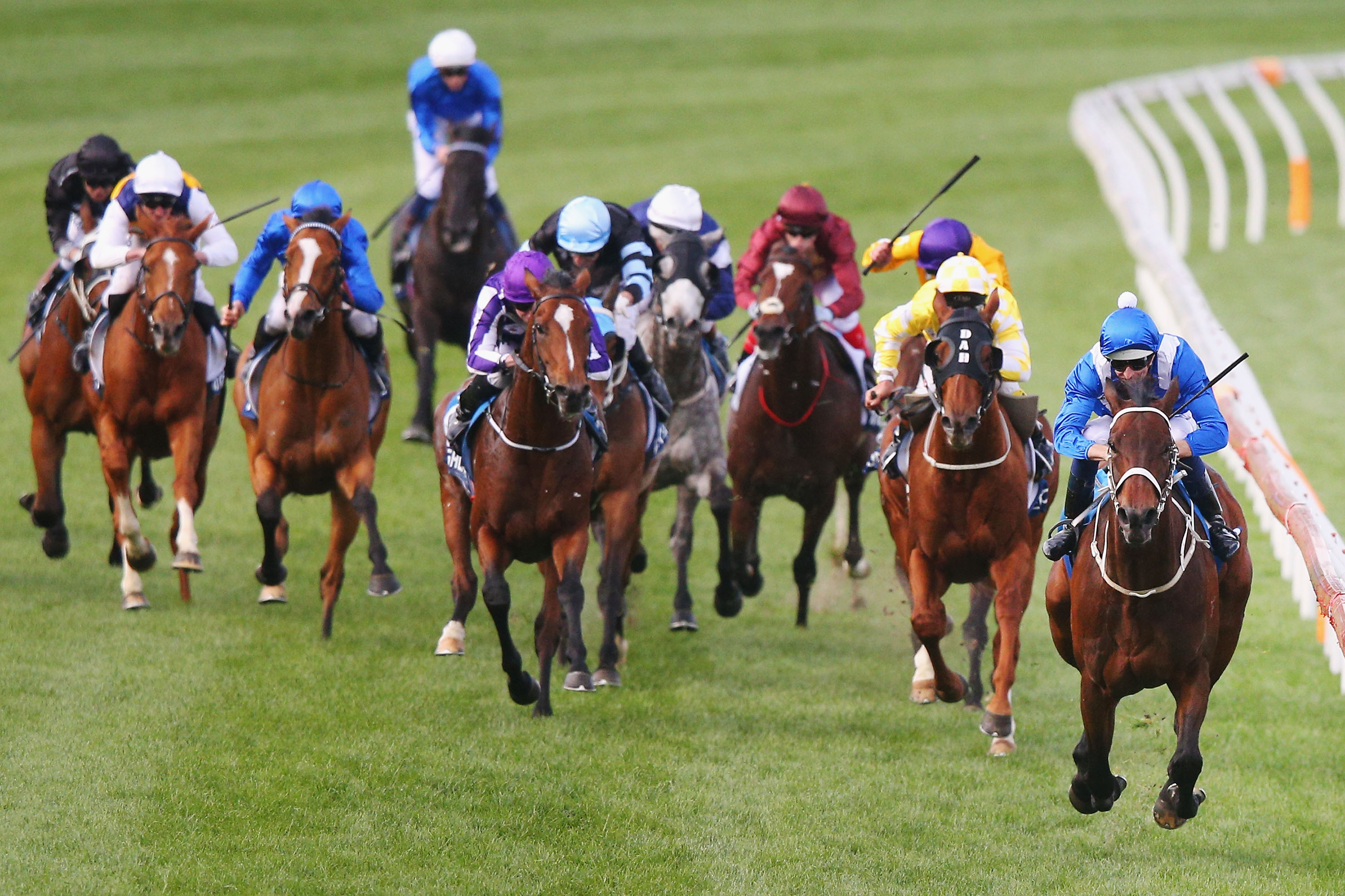 Cox plate 2021 betting on sports soccer betting rules spread