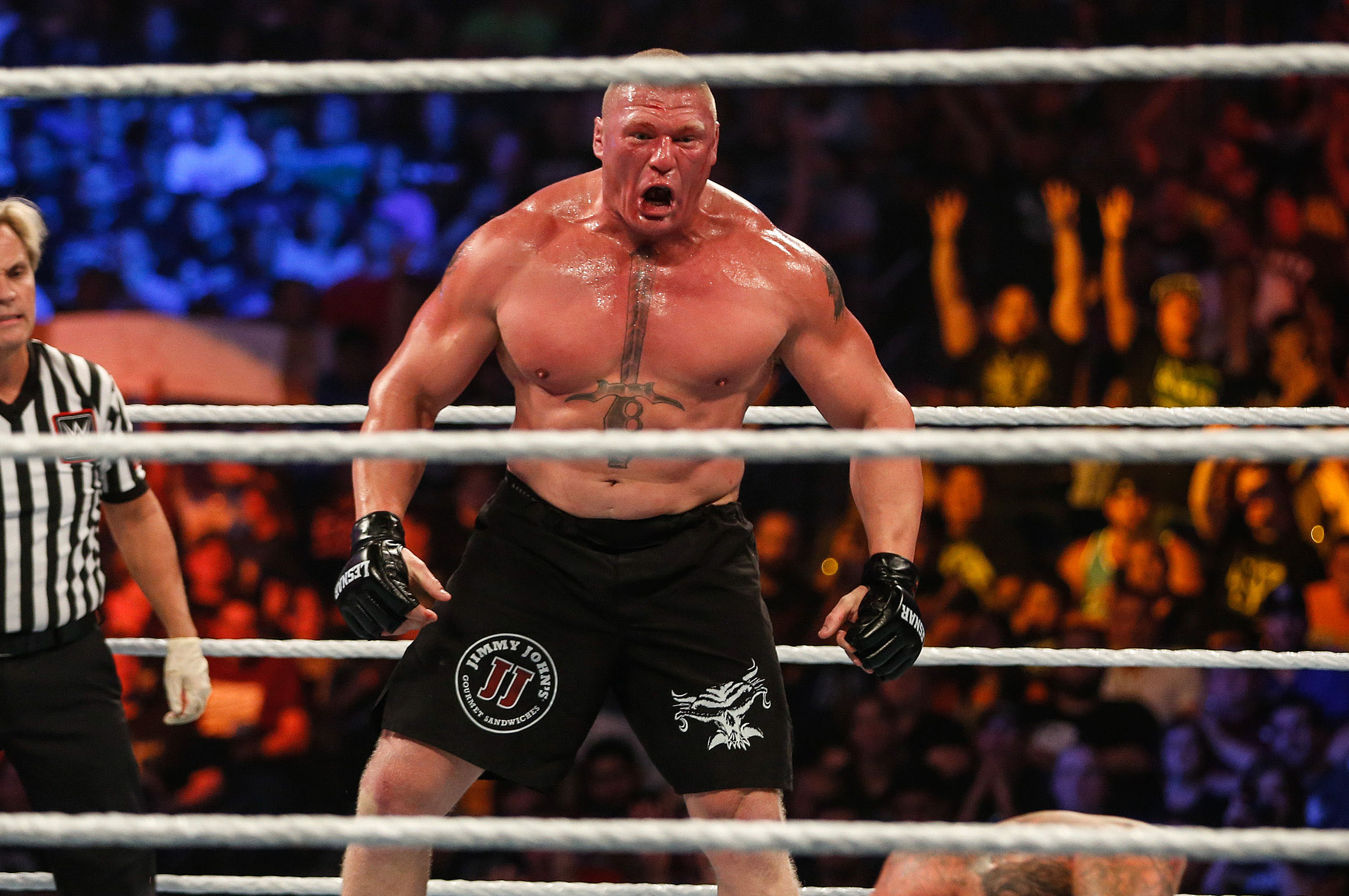 Brock Lesnar Fined For Assault On Randy Orton At Wwe Summerslam