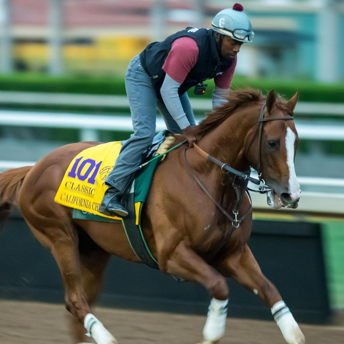 Breeders Cup 2016 Post Positions Horse Odds Prize Money