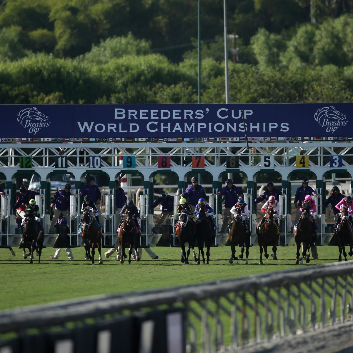 Breeders Cup 2016 Results Tracking Winners And Prize Money Payouts