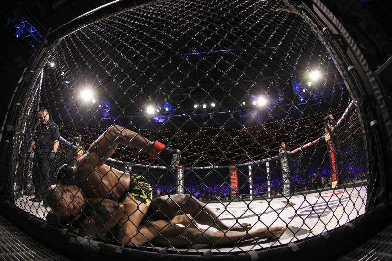For Love, Not Money: How Low Fighter Pay Is Undermining MMA