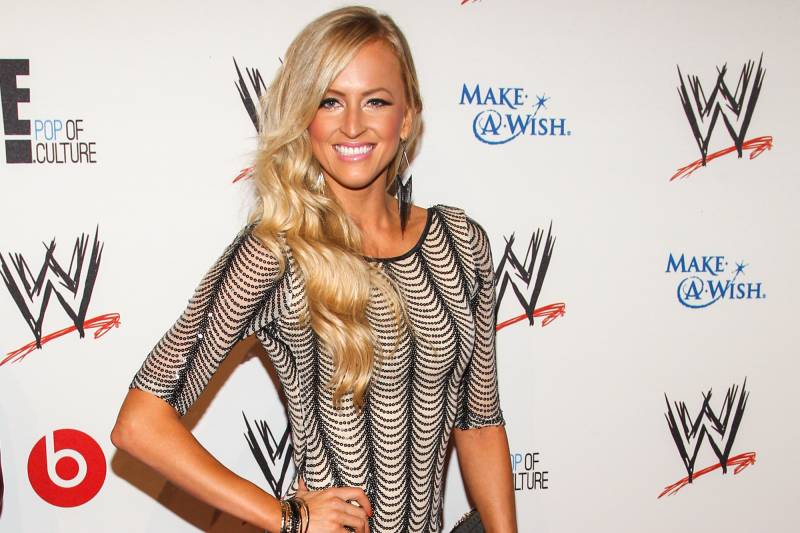 WWE Superstar Danielle Moinet (AKA Summer Rae) arrives at the Superstars of Hope honors Make A Wish Foundation event at The Beverly Hills Hotel on Thursday, August 15, 2013 in Beverly Hills, Calif. (Photo by Paul A. Hebert/Invision/AP)