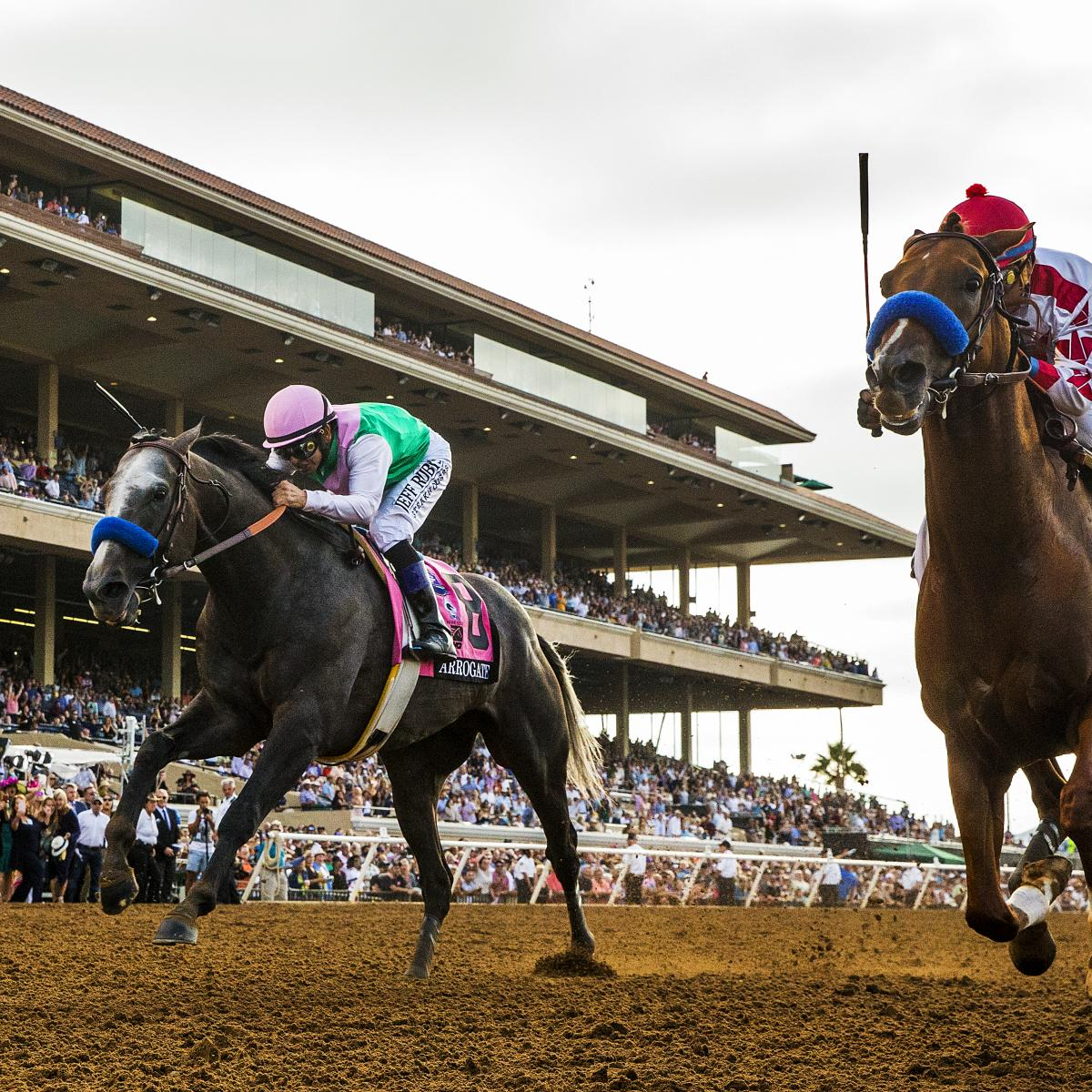 Breeders Cup 2017 Odds And Predictions For All Races