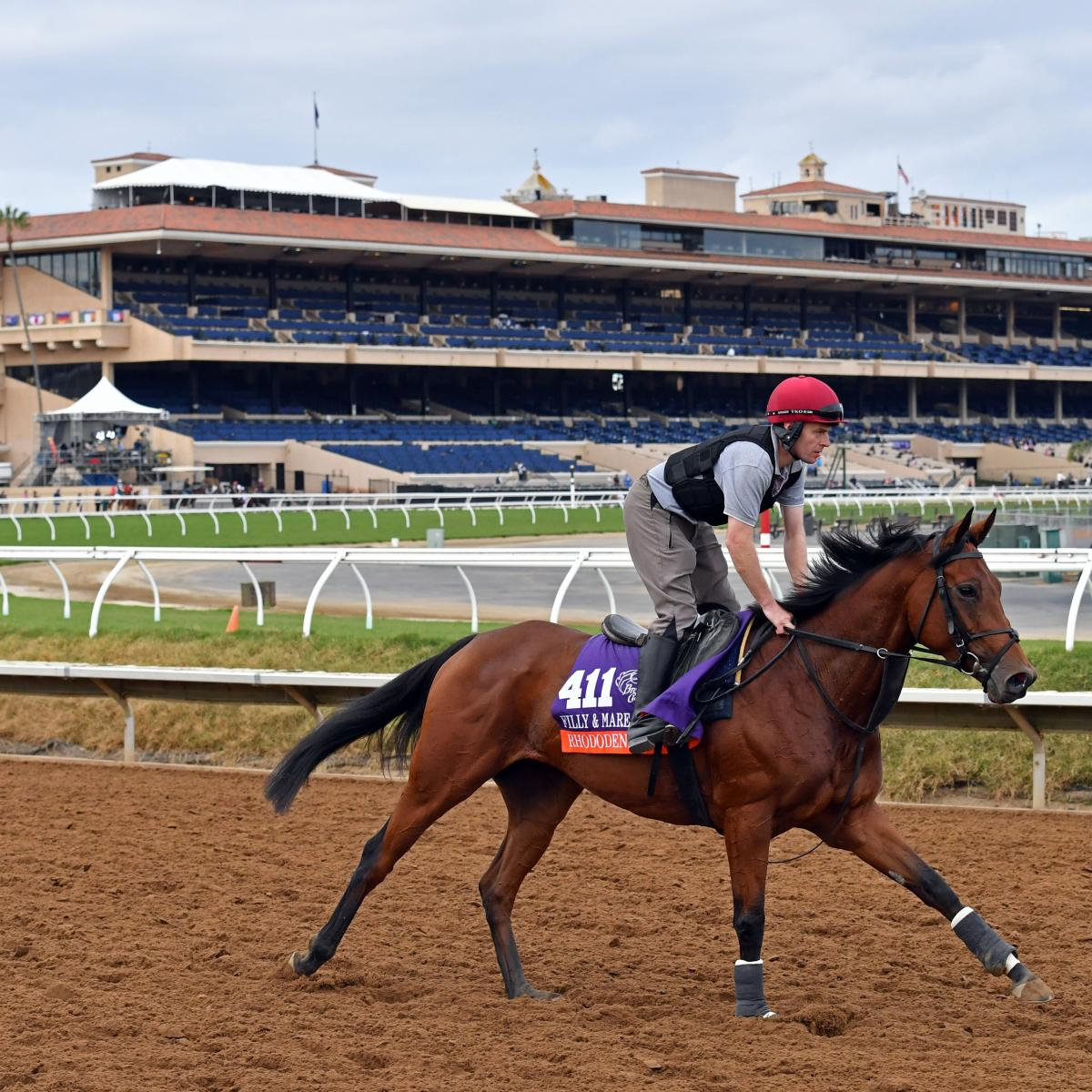Breeders Cup 2017 Odds Lines And Predictions For All