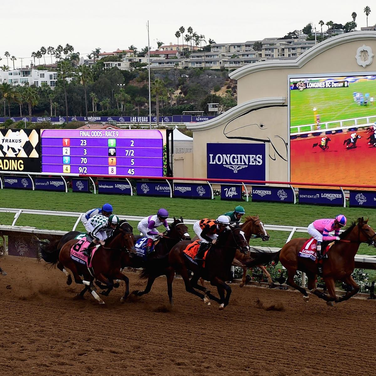 Breeders Cup 2017 Results Tracking Winners And Prize