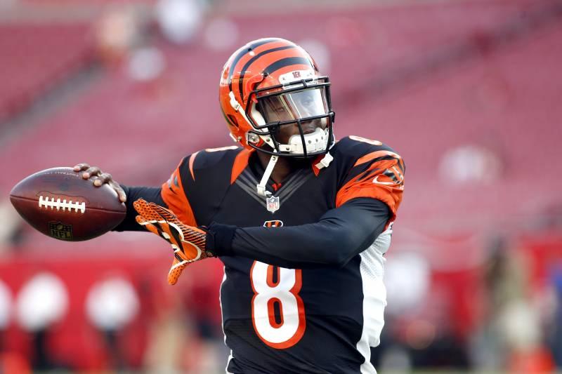 Cincinnati Bengals quarterback Josh Johnson (8) warms up before the start  of an NFL da04e8f13