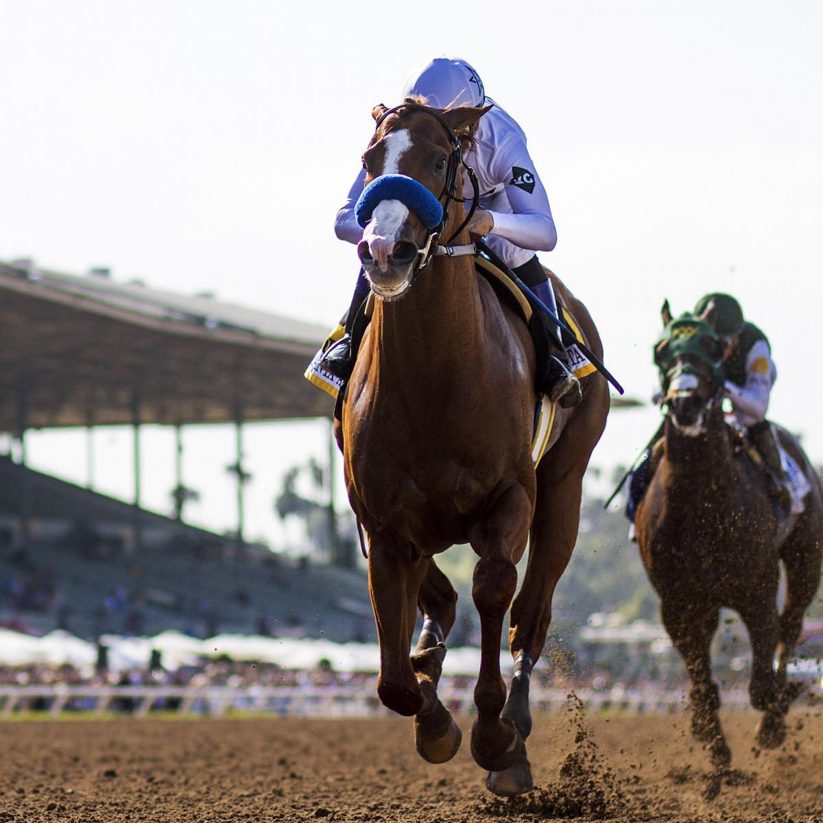 Kentucky Derby 2018 Odds Latest Betting Lines And