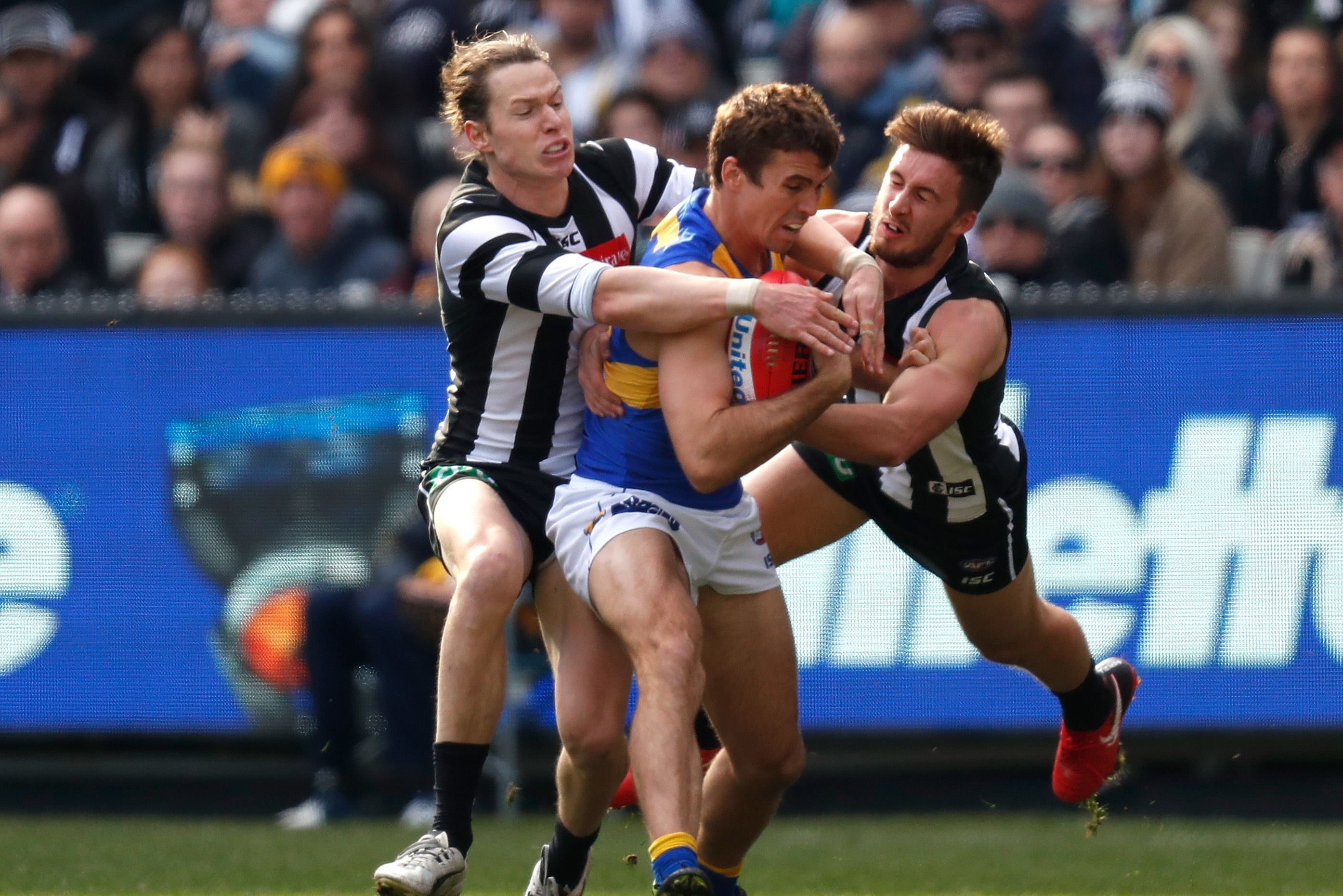 Afl betting odds round 136 buy bitcoins instantly with amex