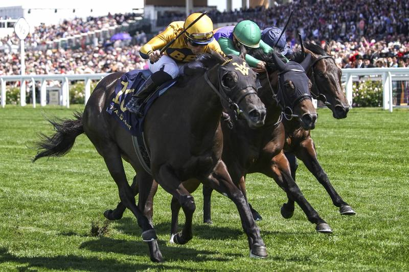 Breeders' Cup 2018 - Live@ 🐎Races, Post Time, TV Schedule