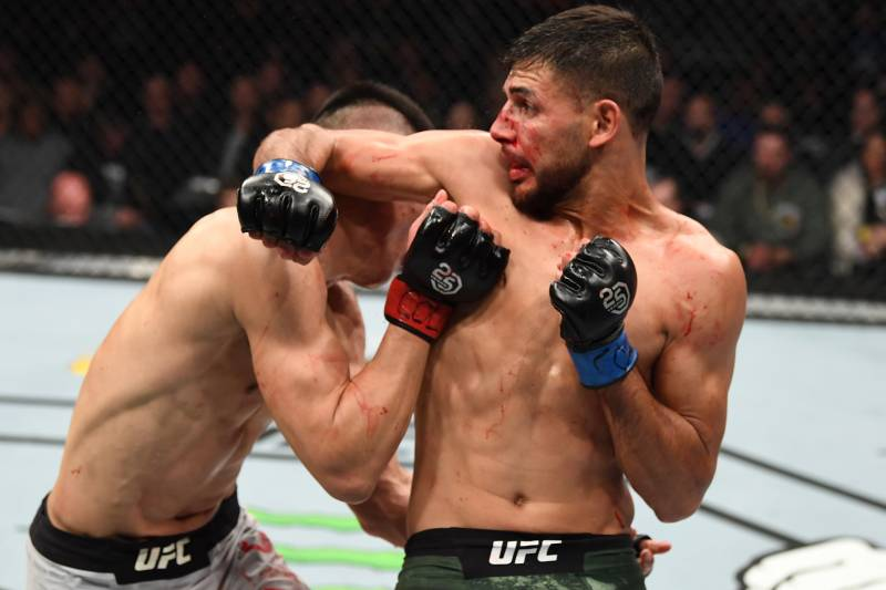 Image result for yair rodriguez ufc