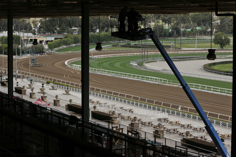 Arms Runner Becomes 23rd Horse to Die Since Dec. 26 at Santa Anita Race Track