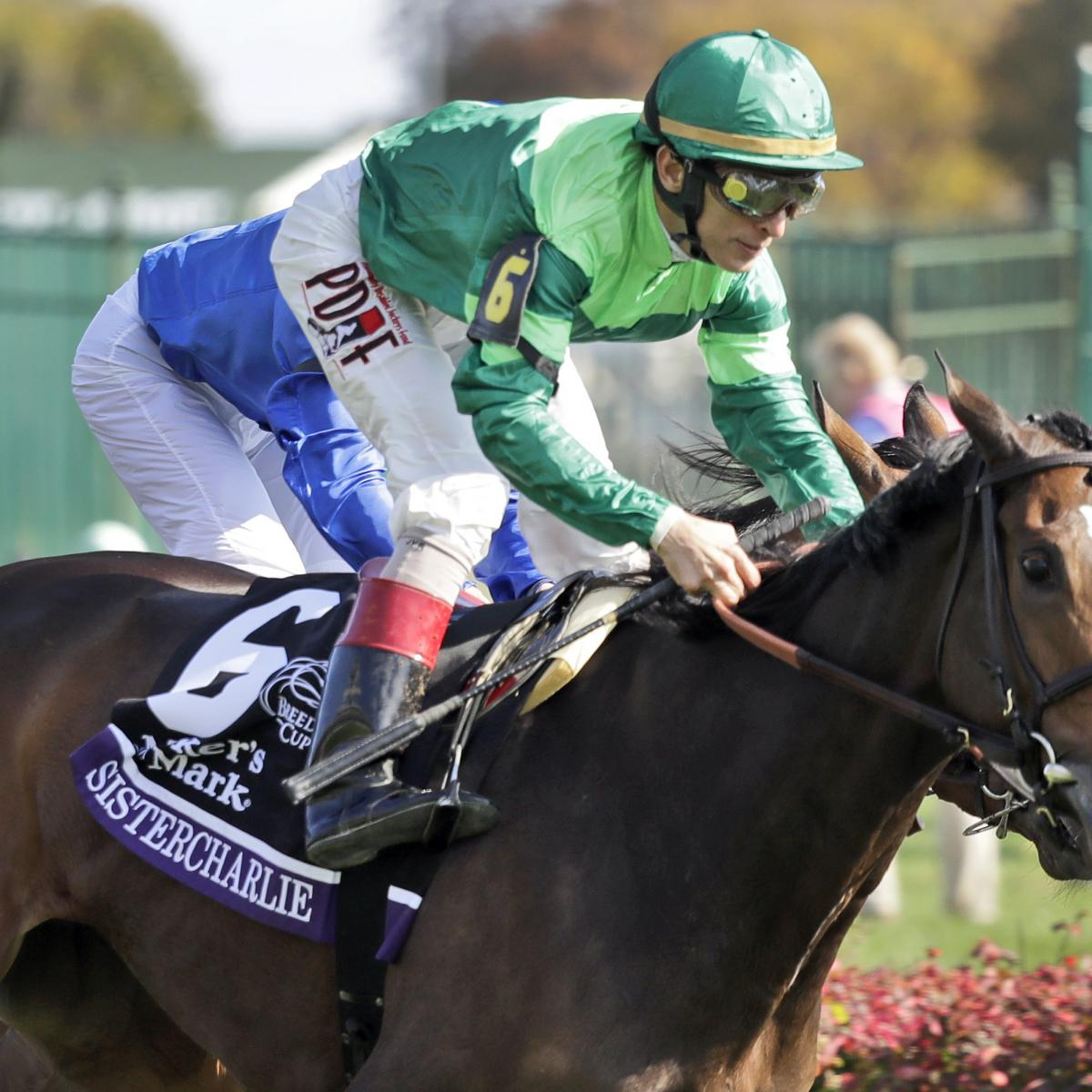 Kentucky Derby 2019 Odds Pedigree Jockey Info For