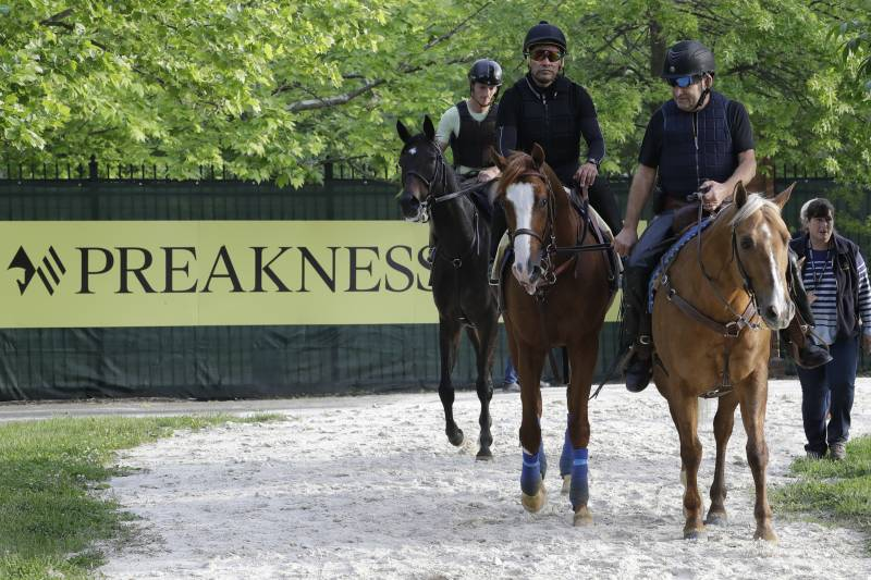 Horse Odds, Prize-Money Predictions, top contenders and Post Positions about Preakness 2019