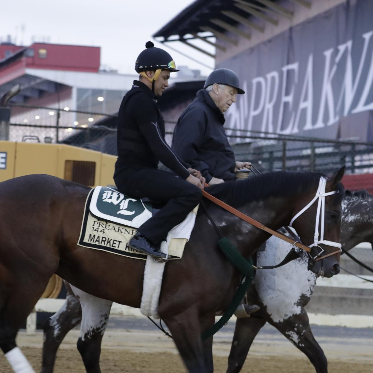 Preakness 2019 Horses: Last-Minute Insight And Final Pre