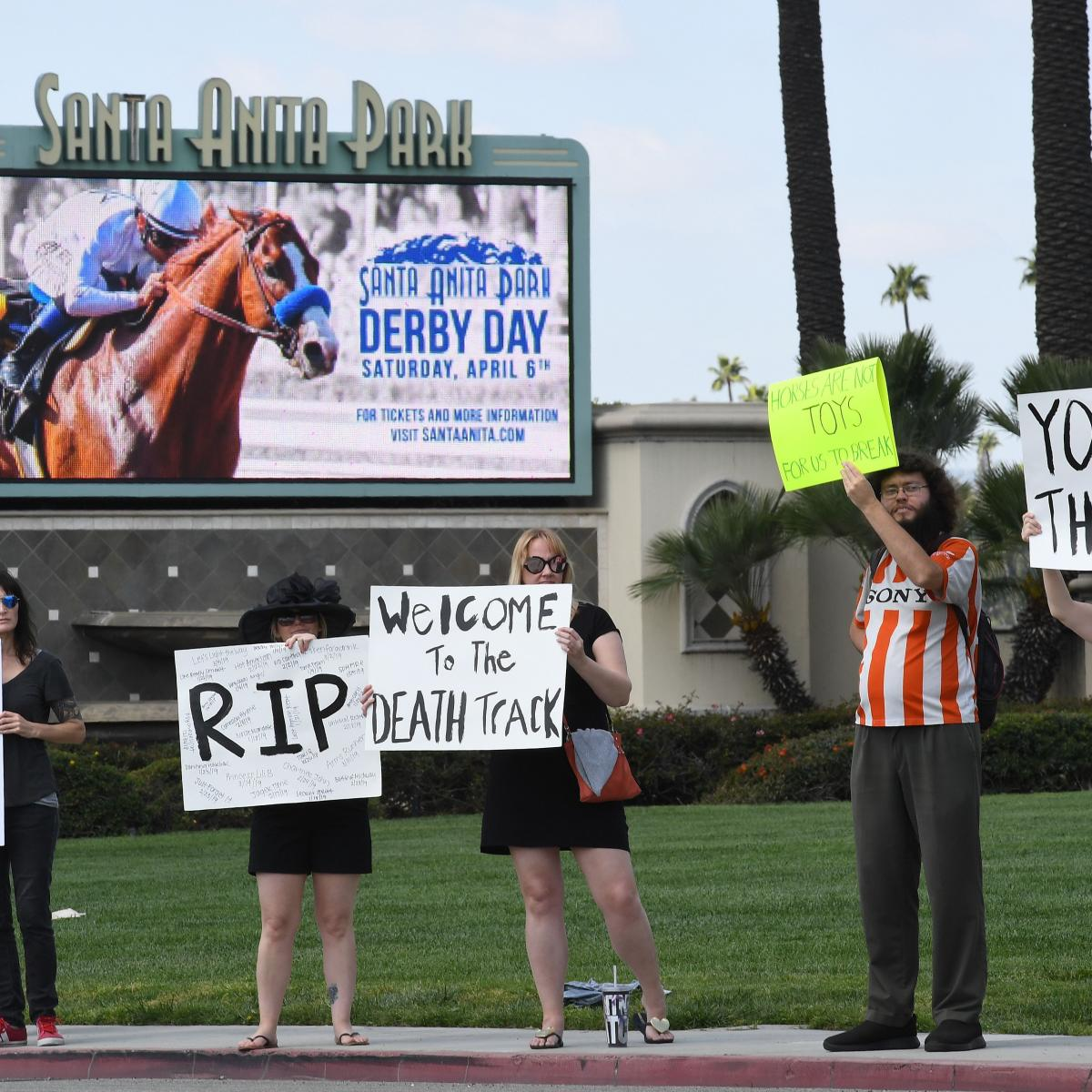 Kochees Euthanized After Race 26th Horse Death At Santa