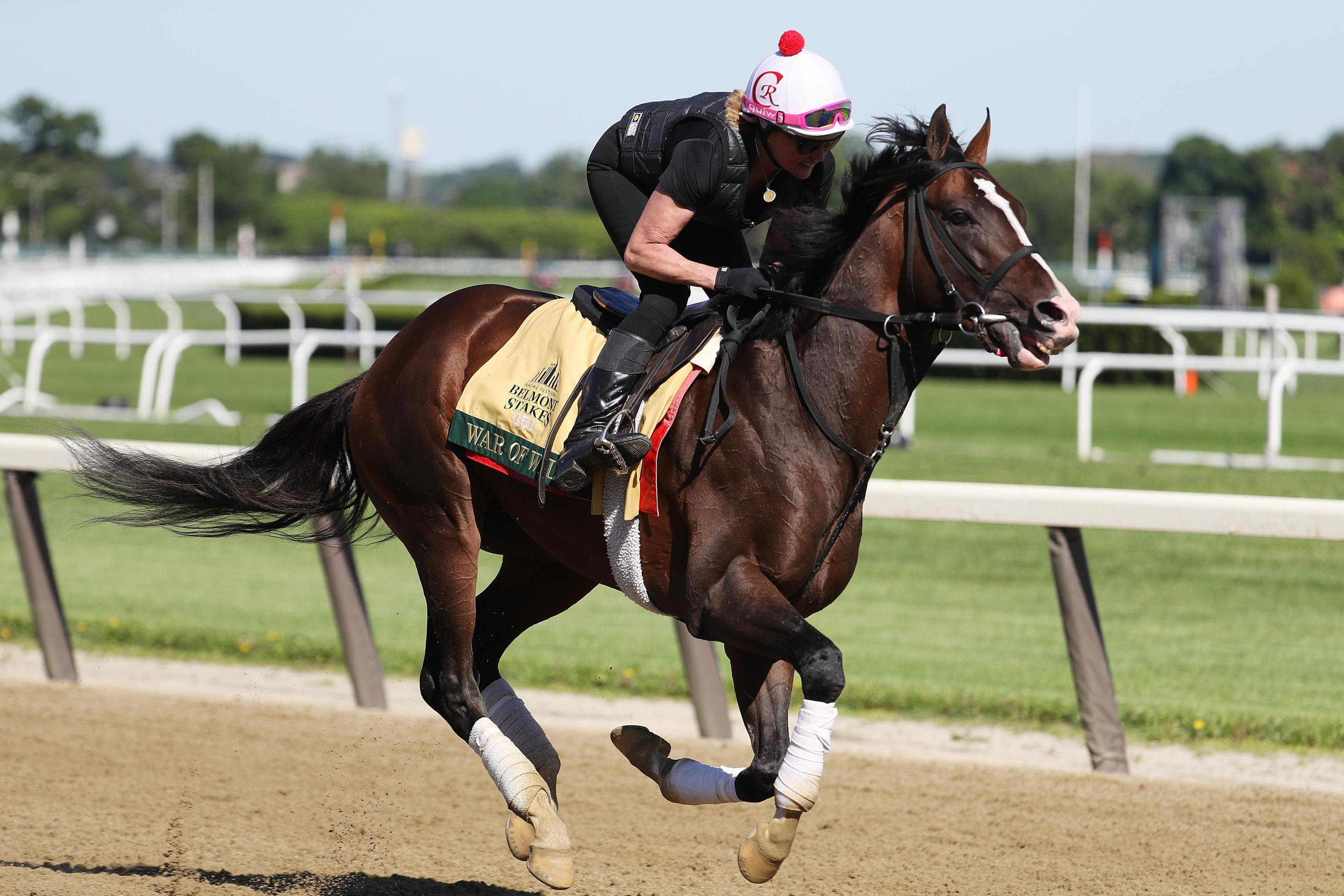 Belmont Stakes Picks 2019: Vegas Odds and Predictions After