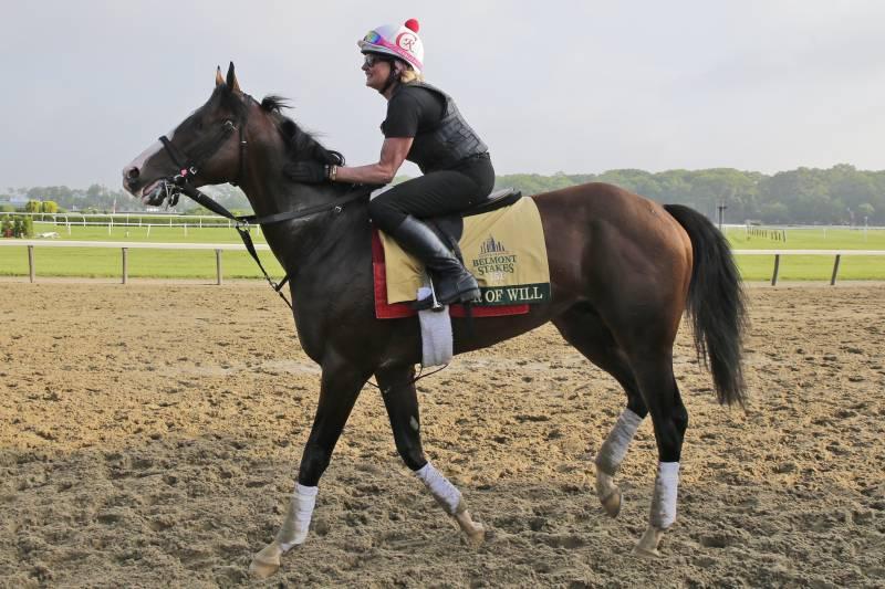 Belmont Stakes Picks 2019: Examining Latest Vegas