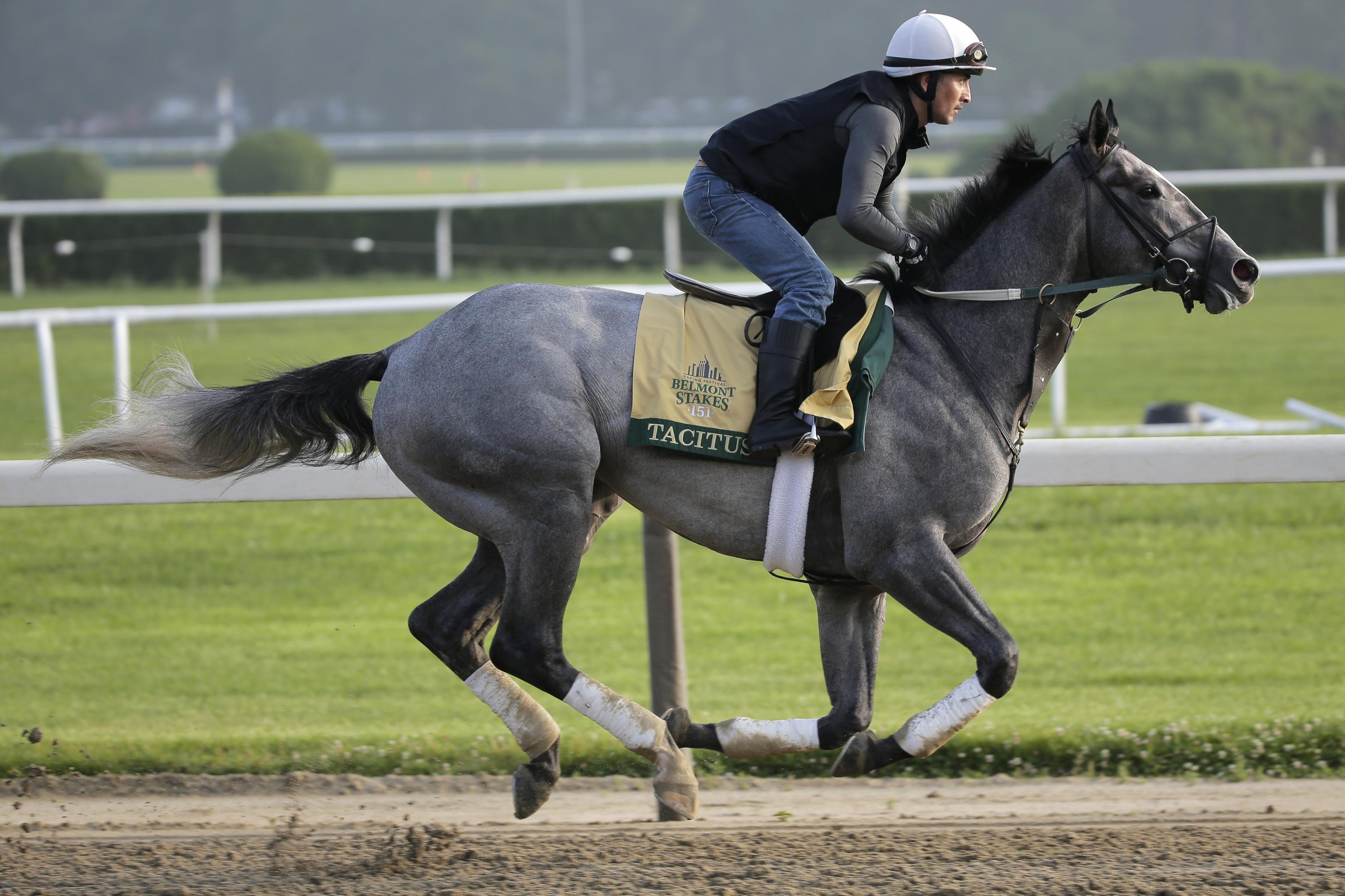Belmont Stakes Odds 2019: Examining Lines, Payouts and Picks