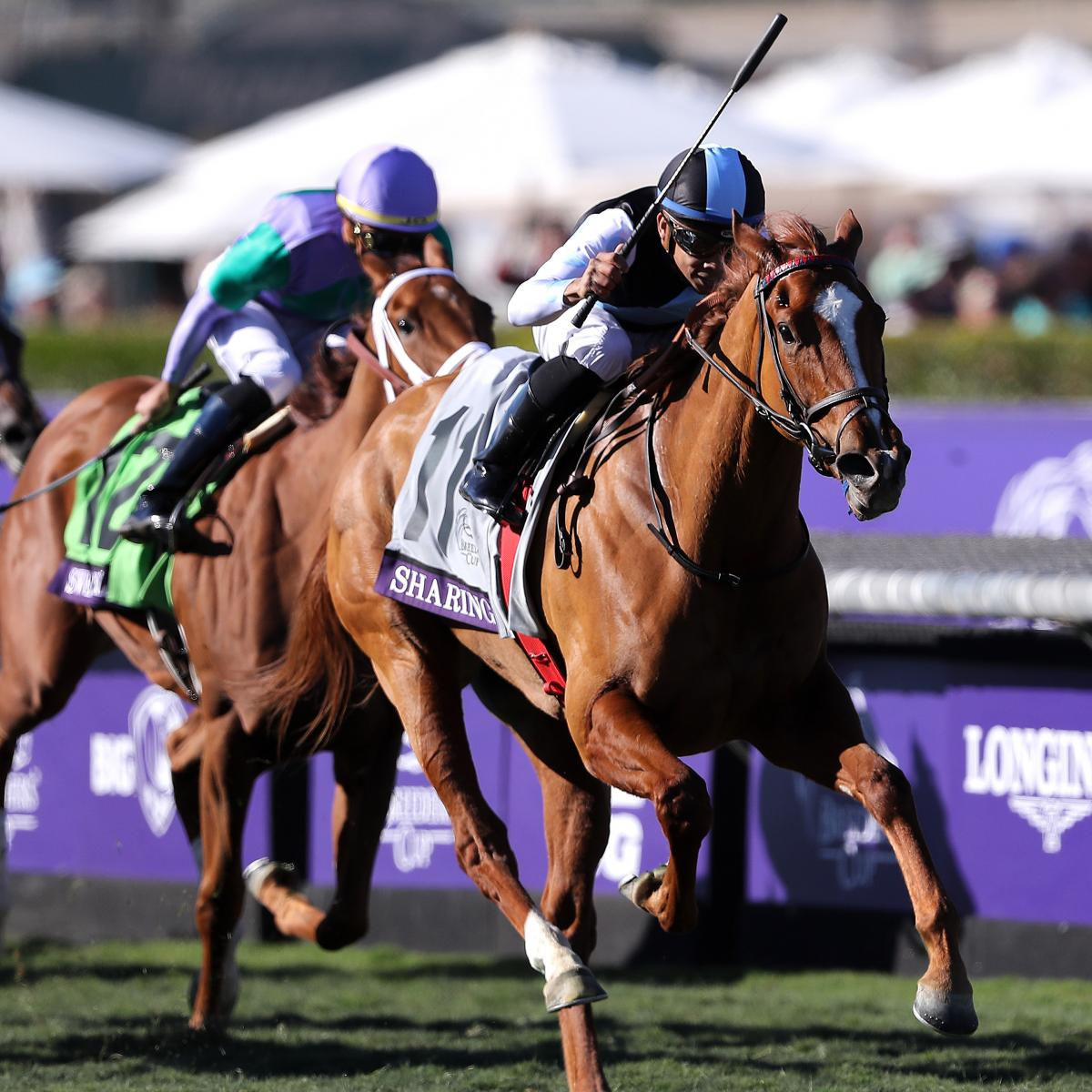Breeders Cup 2019 Payouts Prize Money Purse Info For All