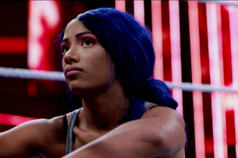 4 Months After Sasha Banks Return To Wwe Has Anything